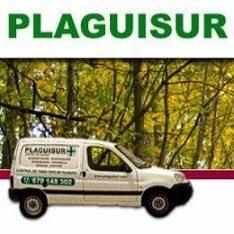 logotipo plaguisur - Plaguisur