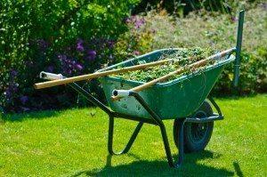 jardines sevilla 300x199 - Maritar