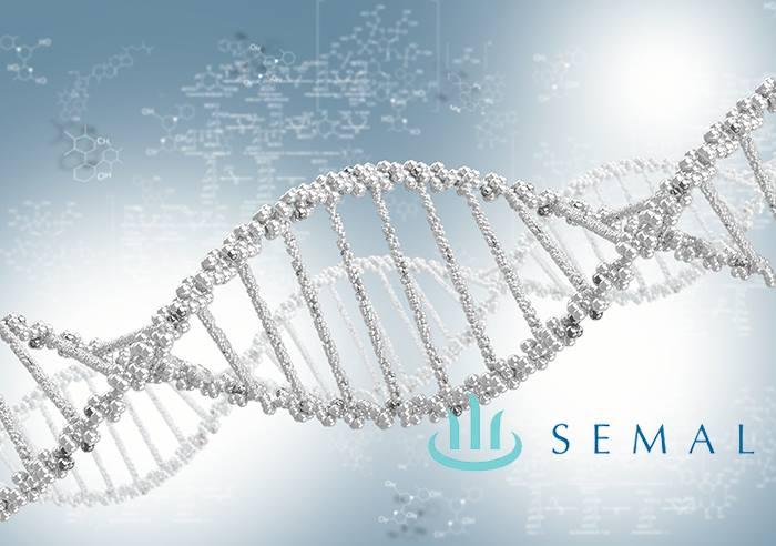 semal - Sociedad Española de Medicina Antienvejecimiento y Longevidad