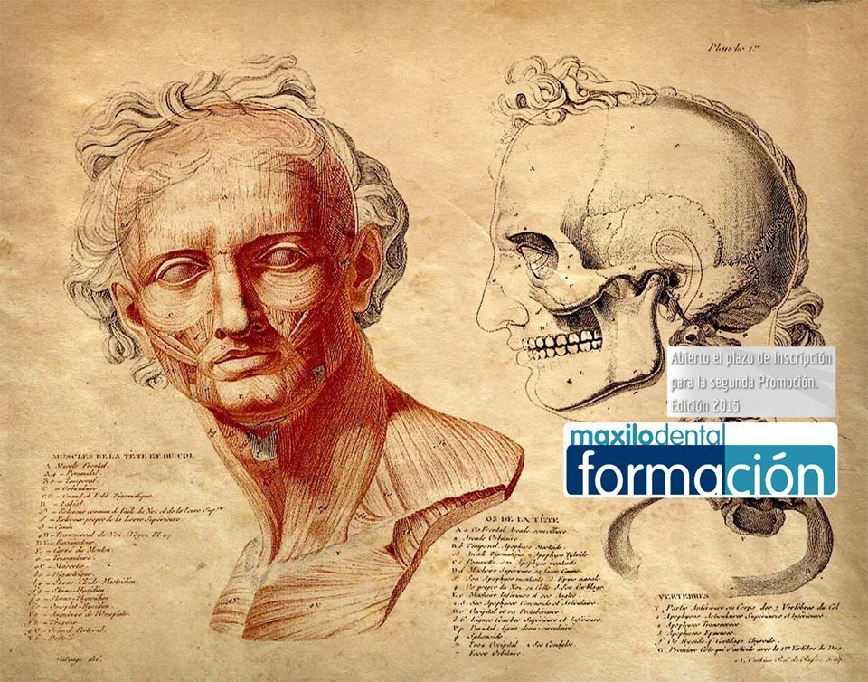 master implantología cordoba - Máster Implantología Córdoba